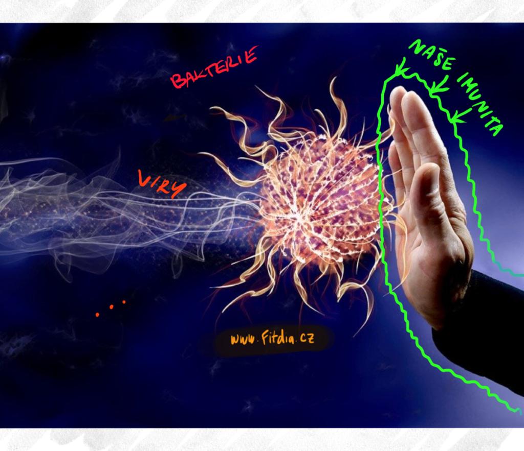 Jak funguje naše imunita a jak ji zvýšit